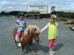 Shetland Pony - Rachel and Rebecca