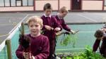 School Garden 2010 - Thomas, Justin, Conal, Rachel