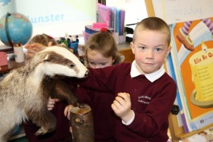 Enda stroking a badger.