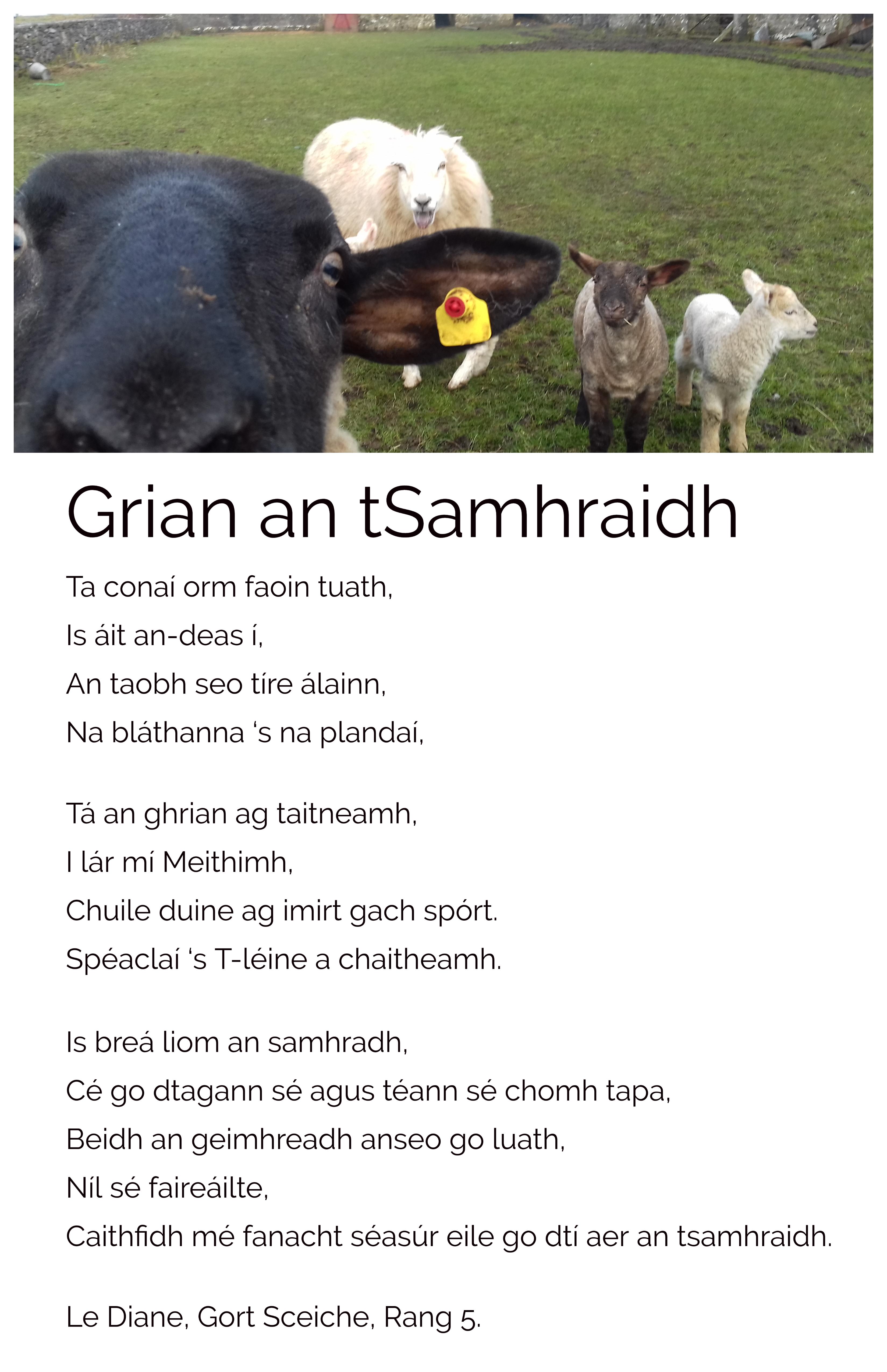 Grian an tSamhraidh